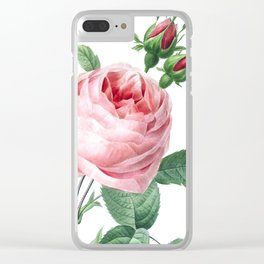 Nature, botanical print, flower poster art of Provence rose Clear iPhone Case