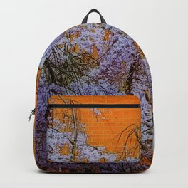 Looking Out.... Backpack