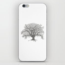 Tree 1 iPhone Skin