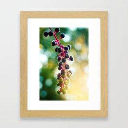 PokeWeed Framed Art Print