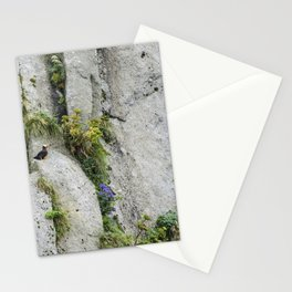 Barely Blending Stationery Cards