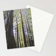 Sunlight through the trees Stationery Cards