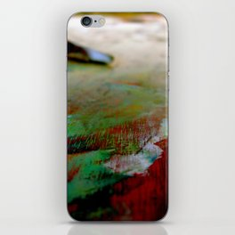 Palette Cleanser iPhone Skin