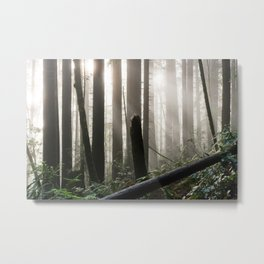 The Mushroom Forest Metal Print