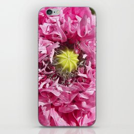 pink poppy macro XII iPhone Skin