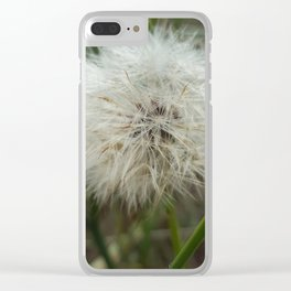 Once Upon A Wish Clear iPhone Case
