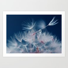Snow Dandelion Art Print