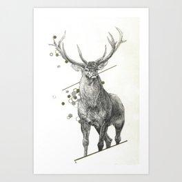 Divine - Buck Art Print