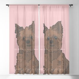 Cute brown Yorkshire Terrier dog - pink background Sheer Curtain