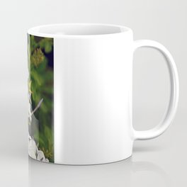 Fall Foliage, Israeli Style Coffee Mug