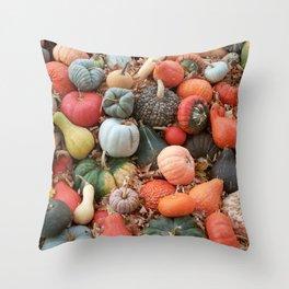cornucopia (heirloom pumpkins and squashes) Throw Pillow