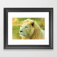 LION AROUND Framed Art Print