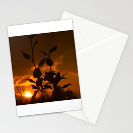 Plant Silhouette at Sunset Stationery Cards