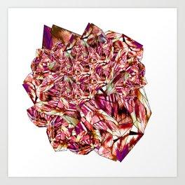 Crystal Ruby Red Gem Stone Art Print