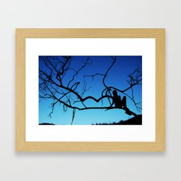 Caught in a Tree Framed Art Print