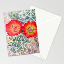Mojave Mound Cactus Flowers Stationery Cards