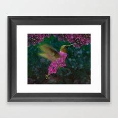 If a hummingbird became a hydrangea Framed Art Print
