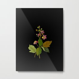 Rubus Fruiticosus Mary Delany Vintage Botanical Collage Paper Flowers Metal Print
