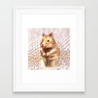 hamster Framed Art Prints featuring hamster by dace k