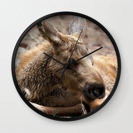 Watercolor Moose Calf 05, Smålandet Moose Safari, Markaryd, Sweden, Leggy Baby Wall Clock