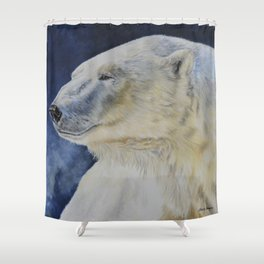 Aurora by Teresa Thompson Shower Curtain