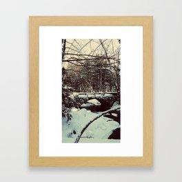 Snowy Bridge in Vaughan's Woods Framed Art Print