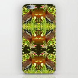 Whistling Duck iPhone Skin