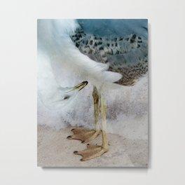 Fantasy Seagull Metal Print