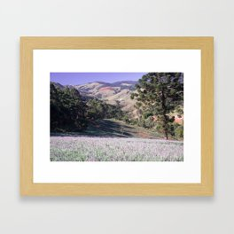 Lavenders and mountains Framed Art Print