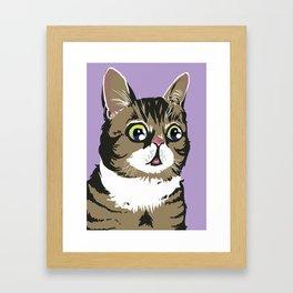 Lil Bub Framed Art Print