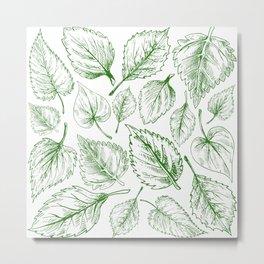 leaf series // no. 2 Metal Print