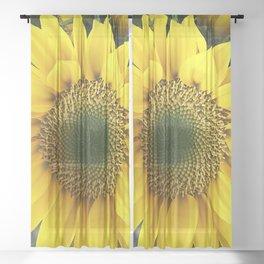 Bright, Happy Sunshine Sunflower Sheer Curtain