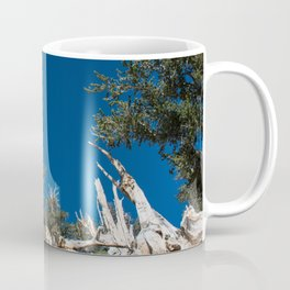 Ancient Bristlecone Pine Forest in California Coffee Mug