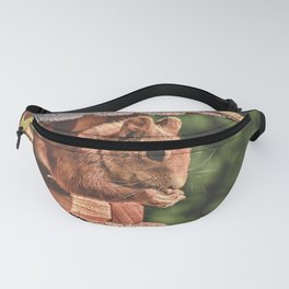 Foraging Squirrel in Little House Fanny Pack