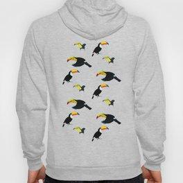 Durante of toucans Hoody