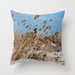 Tame a Wild Wind- horizontal Throw Pillow