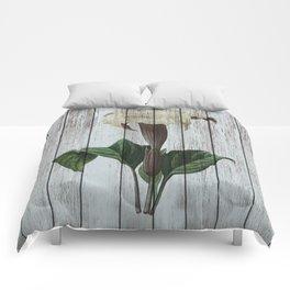Chabby chic Datura Comforters