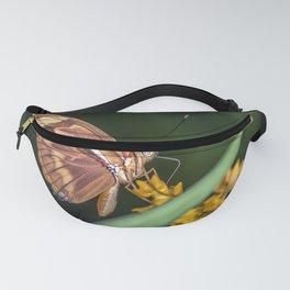 Butterfly on a flower Fanny Pack