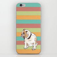 english bulldog iPhone & iPod Skins featuring Bulldog by Tammy Kushnir