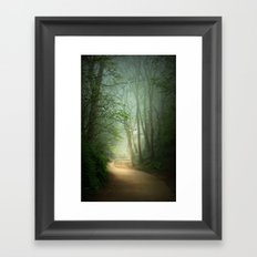 Along the Path Framed Art Print