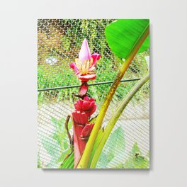 Tropical Petals Metal Print