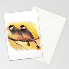 Java Sparrow finches realistic painting Stationery Cards