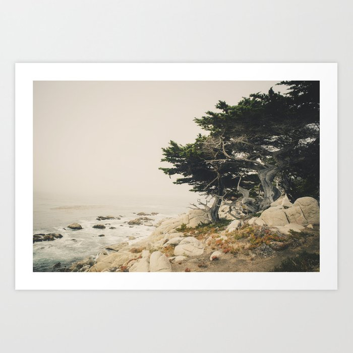Carmel by the Sea Kunstdrucke