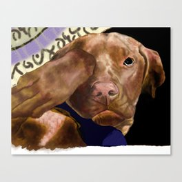 Hunter the Bashful Vizsla Canvas Print