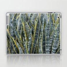 Snake Plants II Laptop & iPad Skin