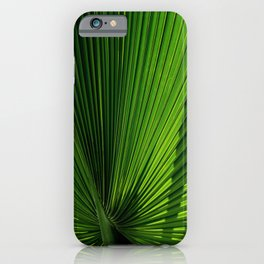 Palm Leves iPhone Case