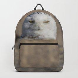 Peekaboo Snowy Owl Backpack