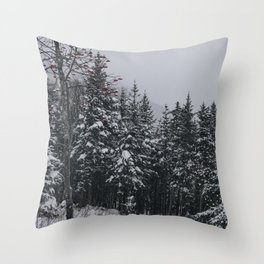 Winter at Lonesome Lake Throw Pillow