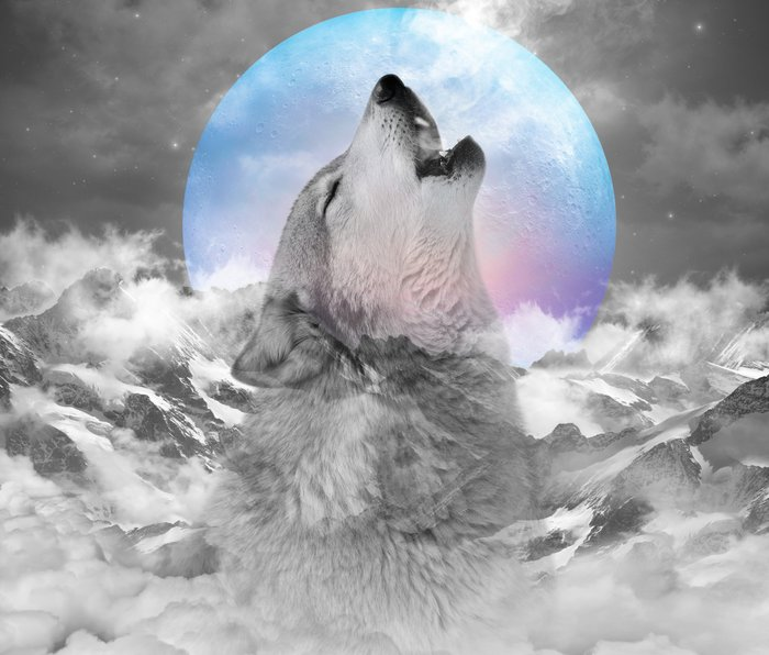 Maybe the Wolf Is In Love with the Moon Metal Travel Mug