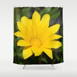 Bright Yellow Gazania Flower Shower Curtain